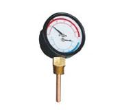 Temperature Pressure Gauge