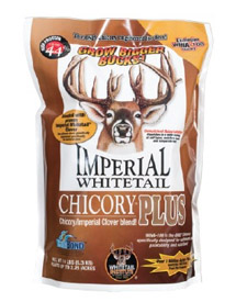 imperial whitetail chicory plus