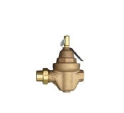 """1/2"""" NPT Feed Water Regulator with Check Valve"""