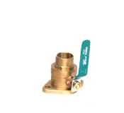 NPT Flanges With Valves (Set of 2)